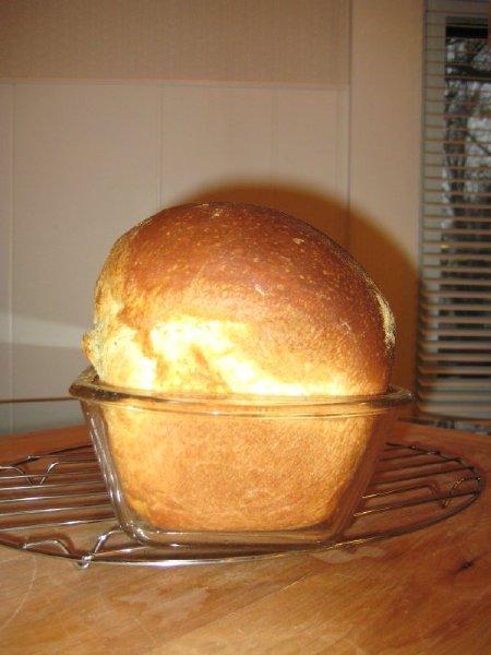 Semolina Sandwich Bread Front View