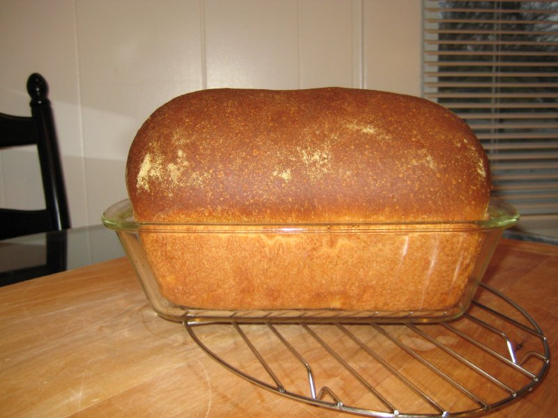 Semolina Sandwich Bread Side View