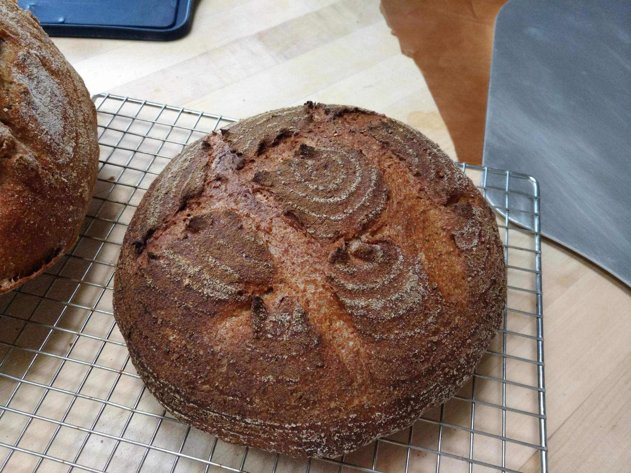 Bread Science Emily Buehler Ebook