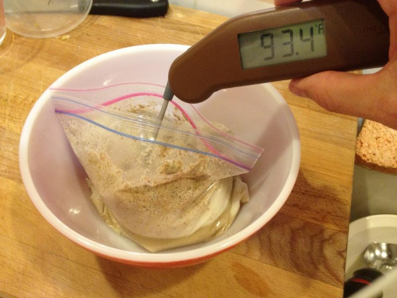 day 2 sourdough temp reads 93.4F