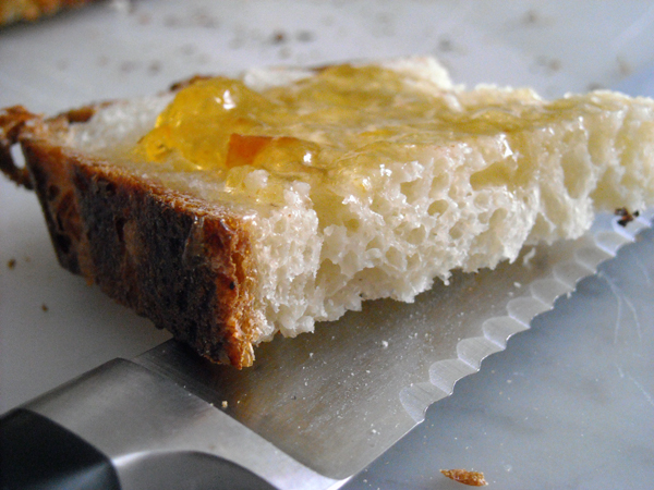 Cold Fermented Pot Bread Slice