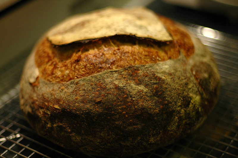 My First Tartine Country Bread