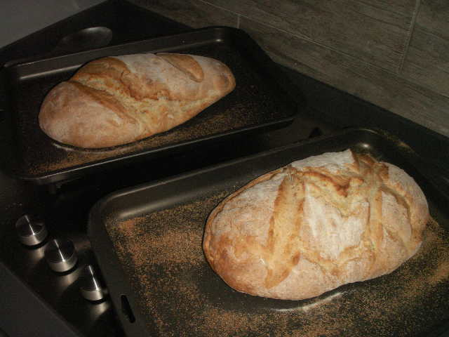 First loaves