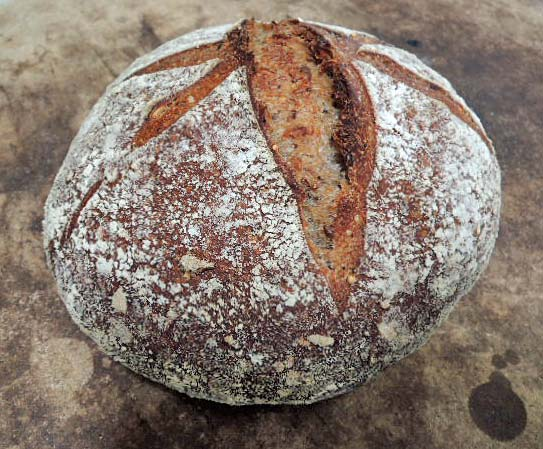 The Crust Was Soft And Chewy The Crumb Was Very Moist And Almost Gummy But Not Really The Aroma And Flavor Were Very Assertive Whole Wheat