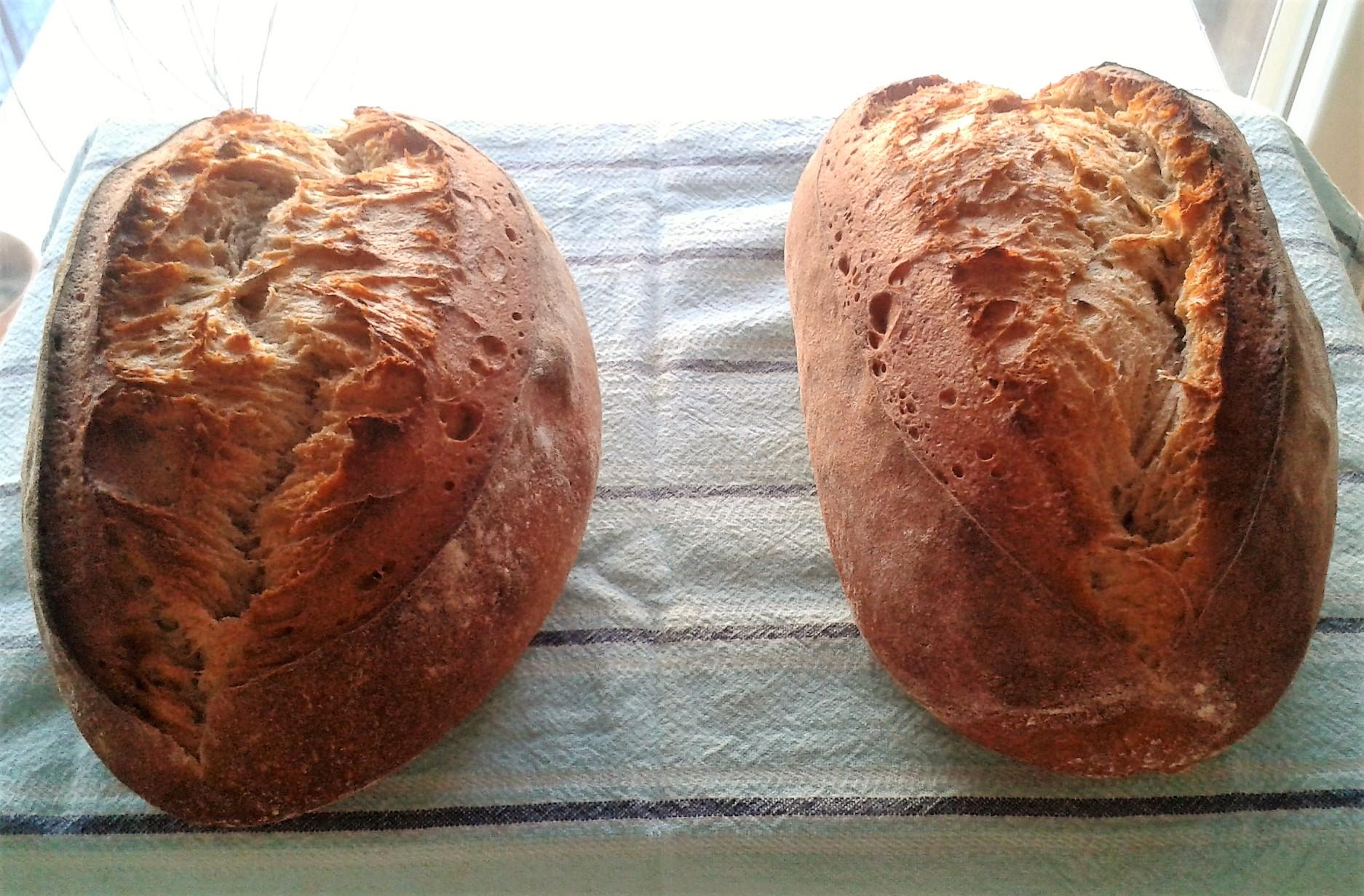 20% Rye sourdough loaves
