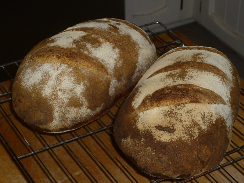 Sourdough Batards