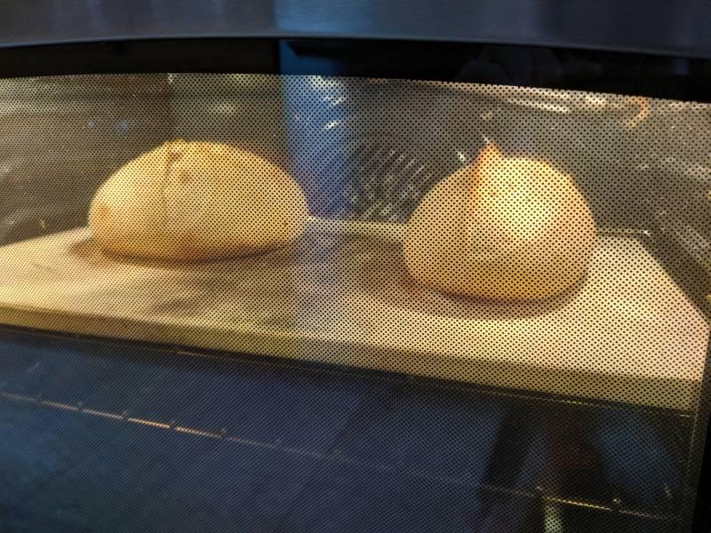 boule vs batard oven spring