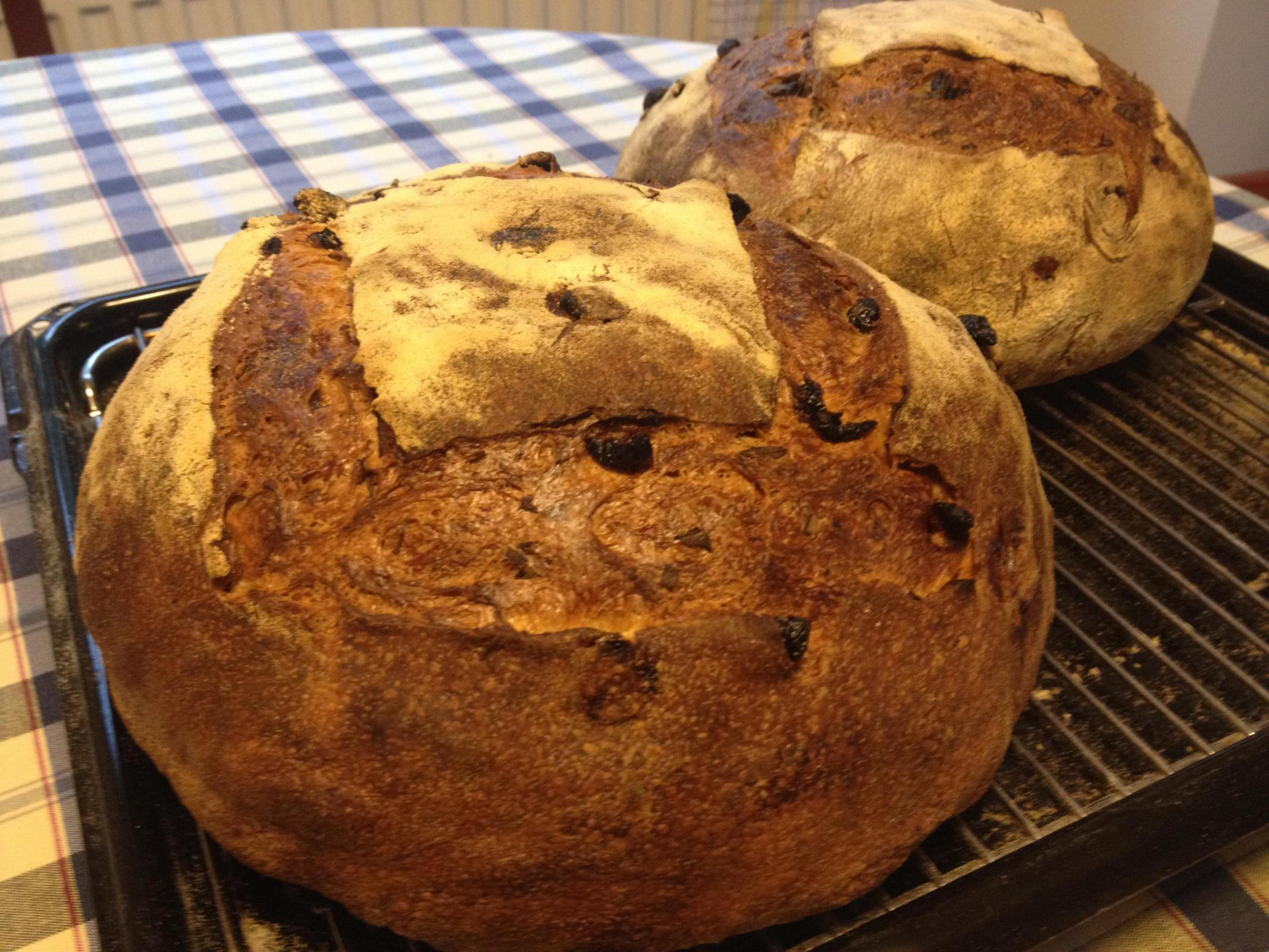 Tarragon  & Cranberries Bread