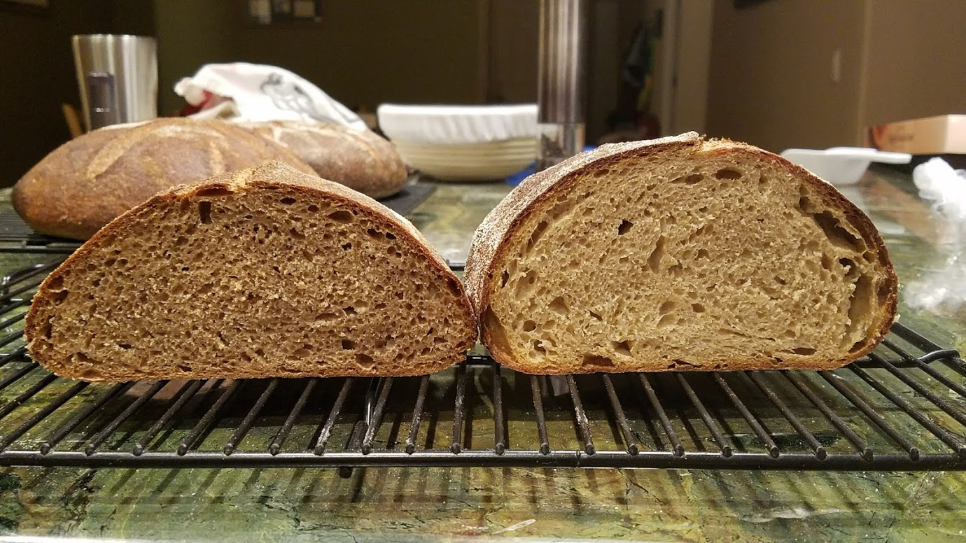 Great River Hard Red Spring wheat vs Prairie Gold at 85% hydration