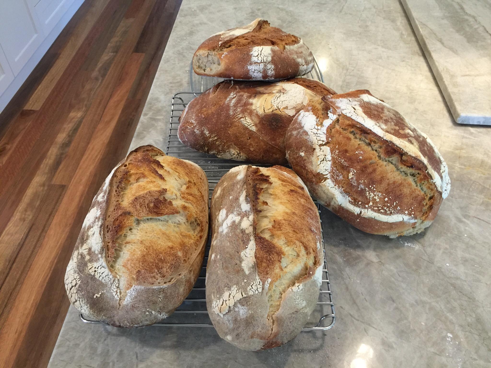 Fresh loaves