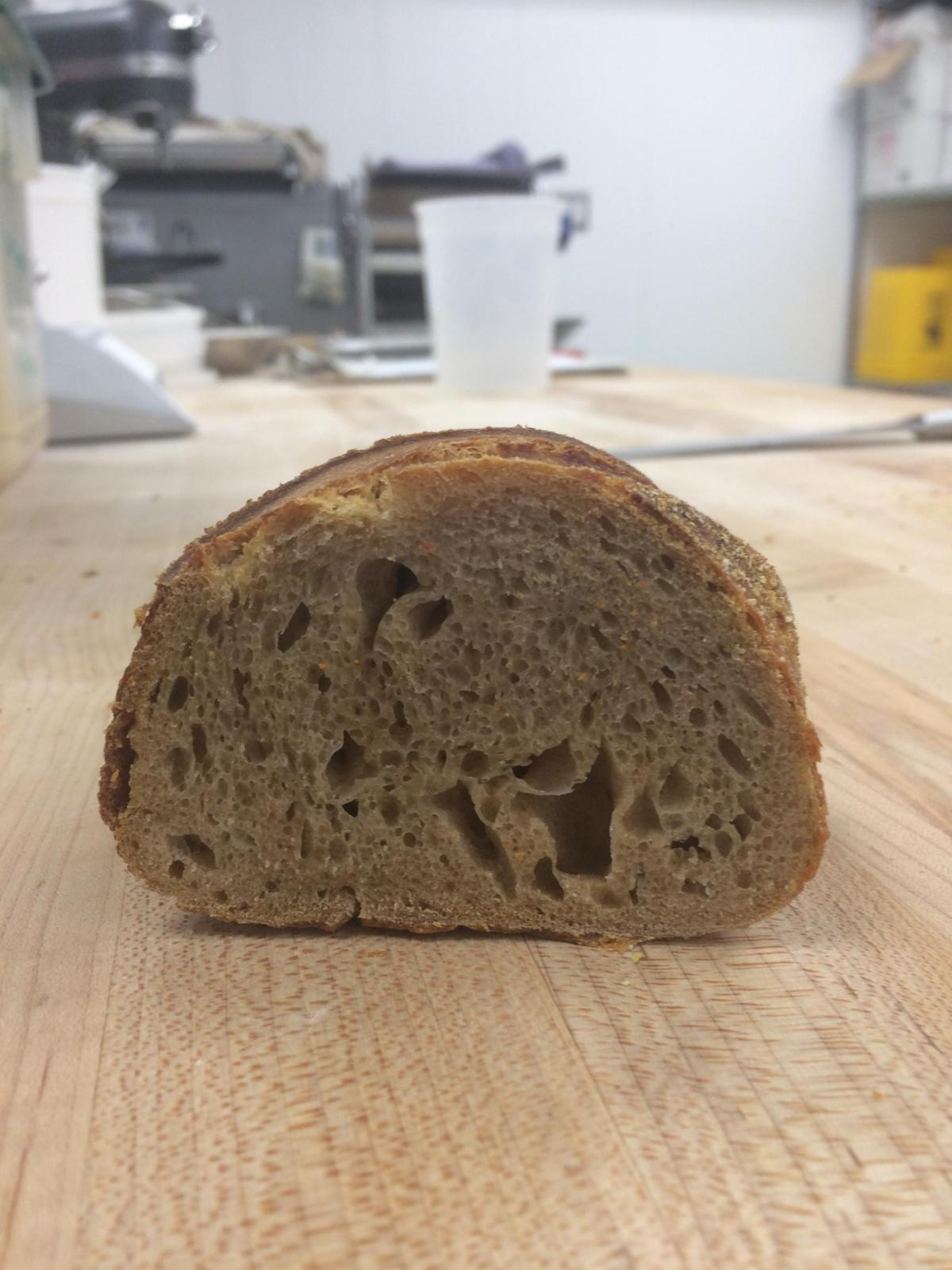 Sourdough isn't proofing after 15hrs in the fridge  | The