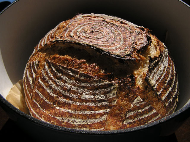 Five-grain levain