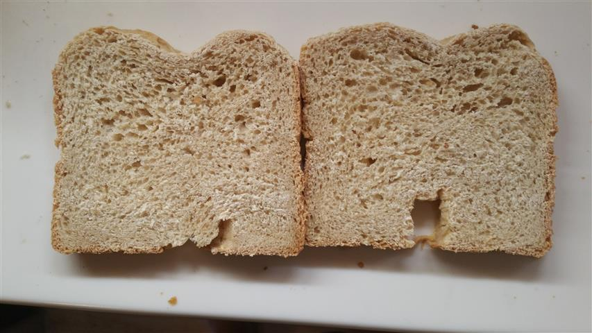 Large pores at top of Barley Bread Slices