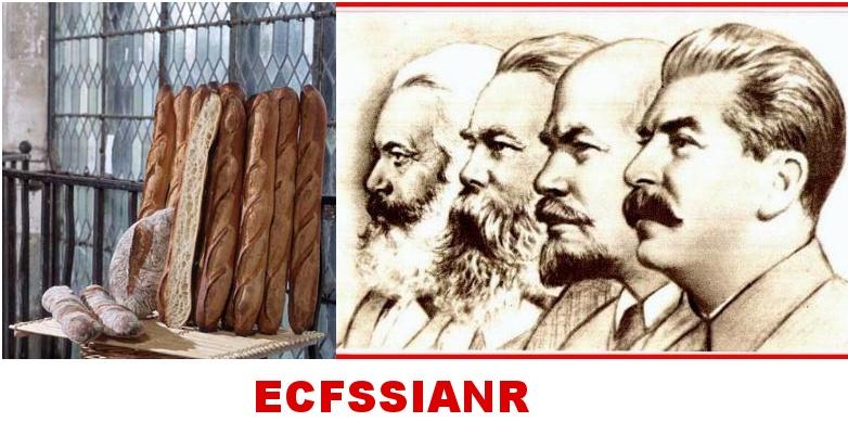 ECFSSIANR logo