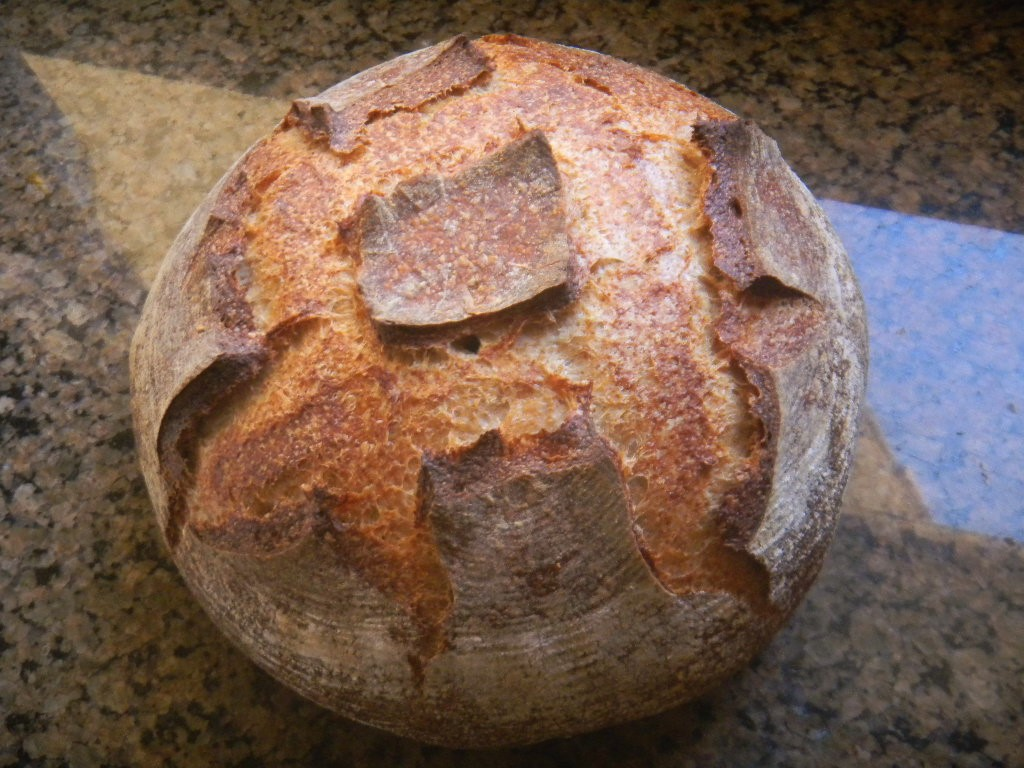 Brownman's Everyday Sprouted Sourdough