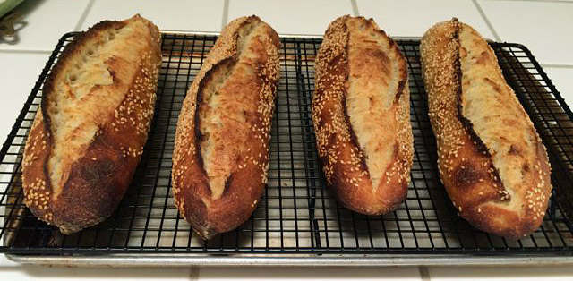 Sourdough Italian Baguettes