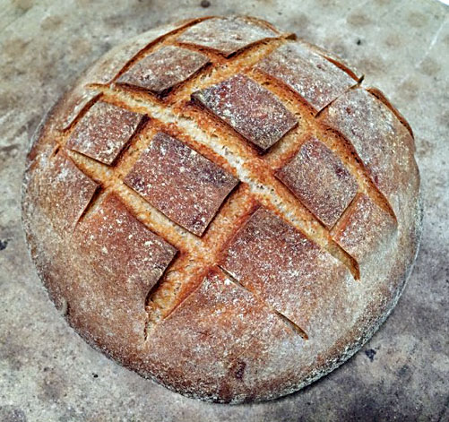 """""""Old-Style"""" San Francisco Sourdough Bread: My newest quest"""