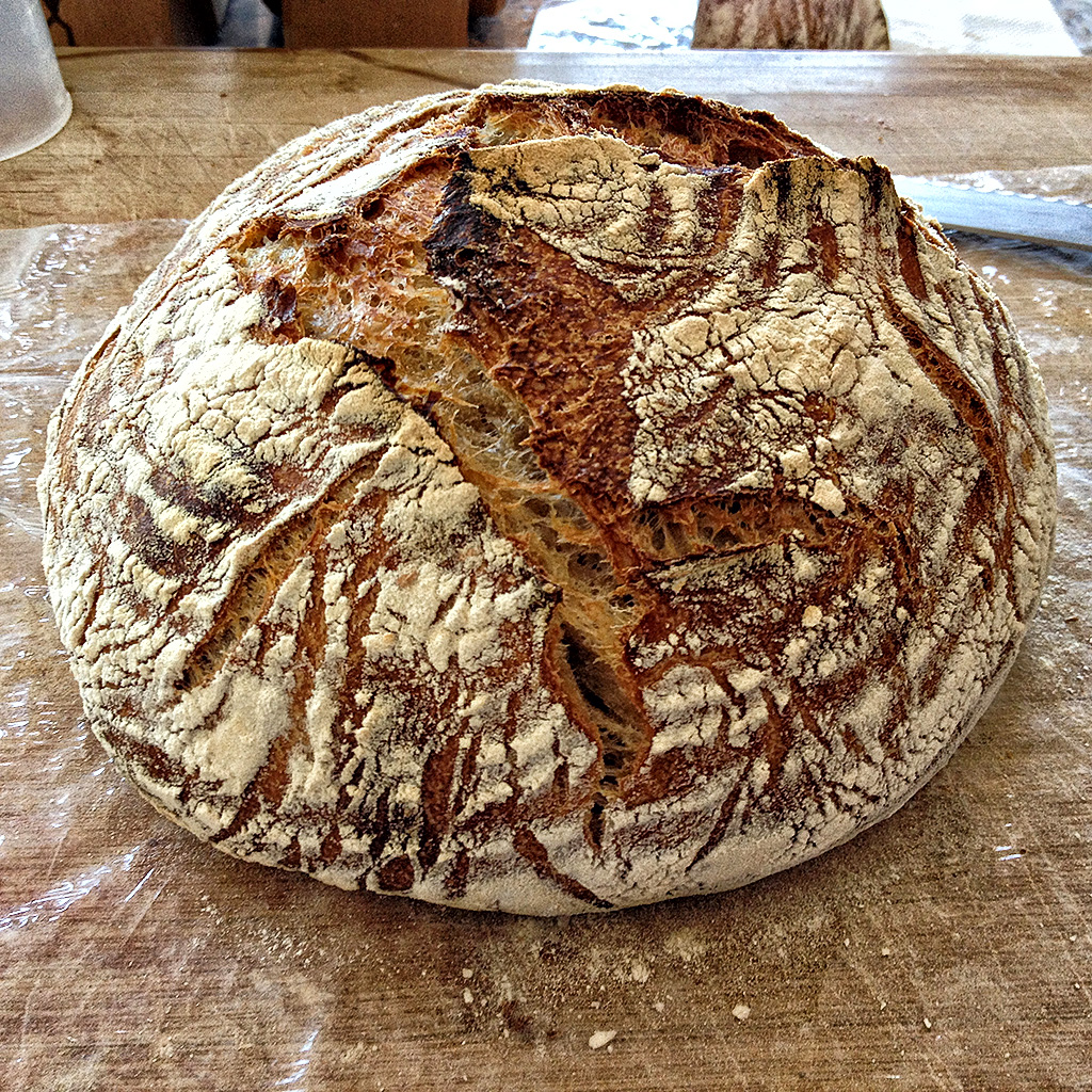 http://www.thefreshloaf.com/files/52795/bread.jpg