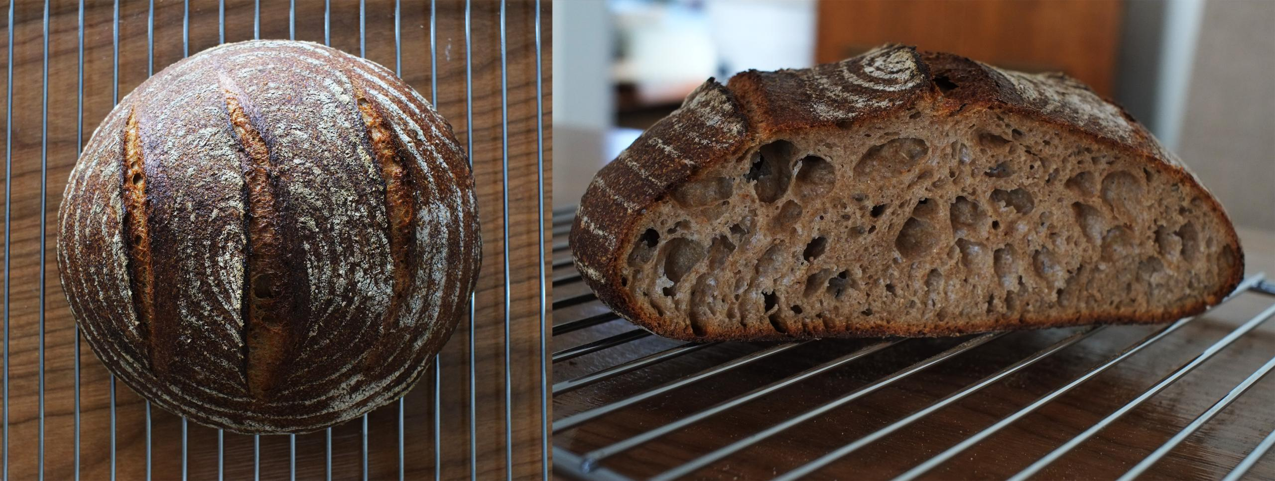 Pain Complet | The Fresh Loaf  Pain Complet | ...