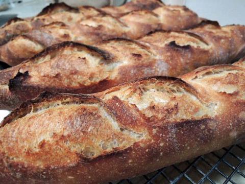San Joaquin Sourdough Baguettes | The Fresh Loaf