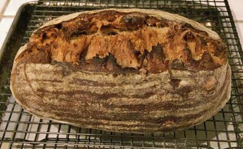 Walnut Dried Fig Sourdough Bread Variation On A Sfbi