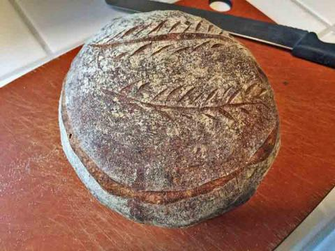 Pain Au Levain With Whole Wheat Flour The Fresh Loaf