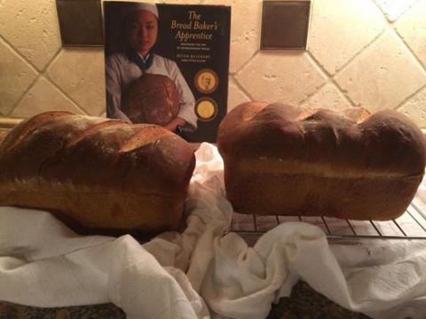 http://www.thefreshloaf.com/files/styles/default/adaptive-image/public/Bread.jpg?itok=Vi5DEpnp