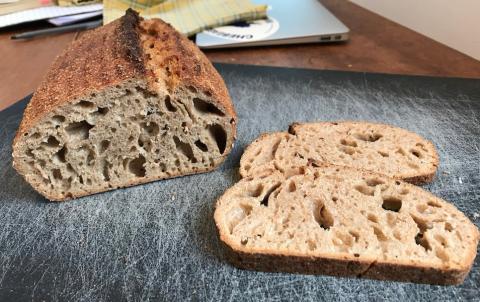 Interior crumb of spelt loaf