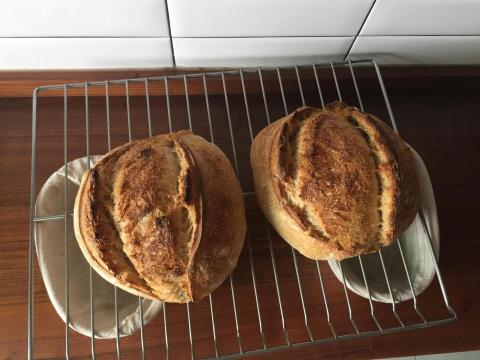 loafs
