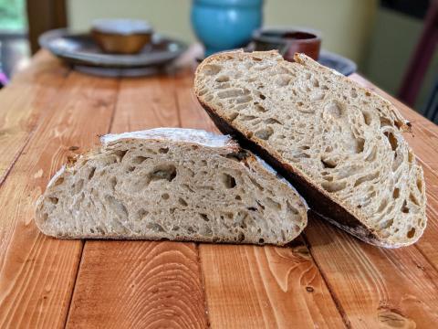 spelt flour sourdough crumb