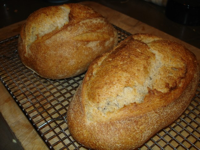 Spelt bread - The Fresh Loaf.com