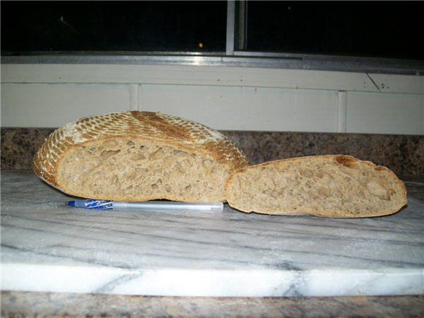 Loaf and crumb 100% Whole Wheat