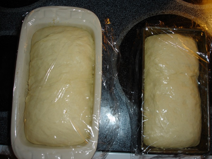 Sandwich loaves final proofing