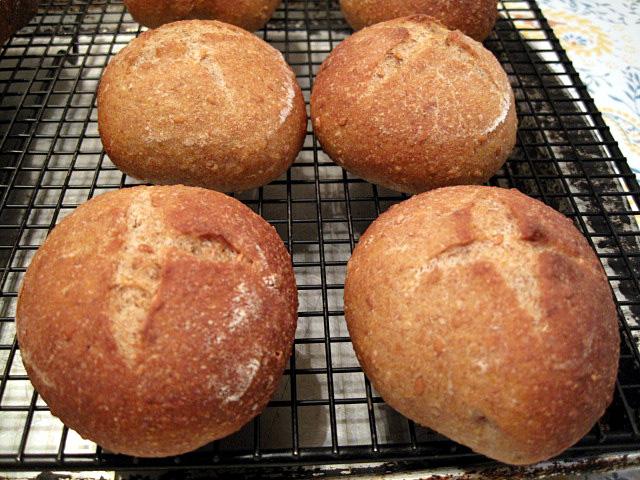 ... multigrain dinner rolls multi grain dinner roll multigrain rolls an