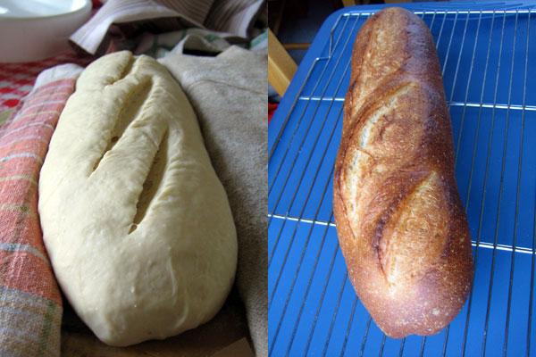 scored loaf