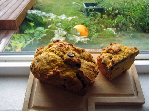 pumpkin bread in window