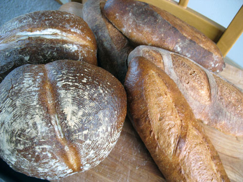 many breads I baked today