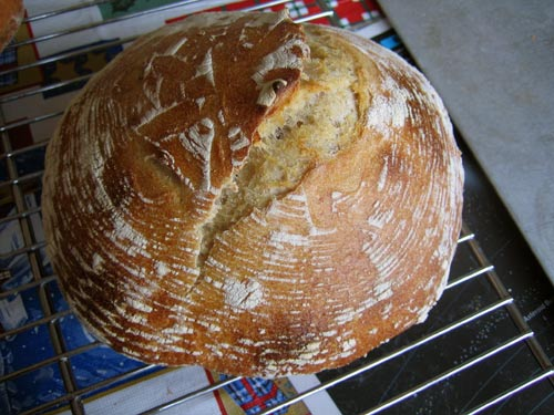 sourdough round