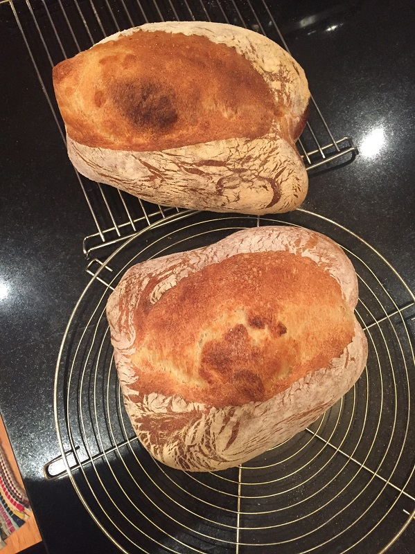 What Could Should I Do Diffely To Perfect This Loaf D Really Get My Vermont Sd And Baguettes In A Consistent State Before