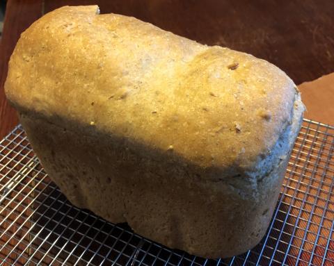 Mark Sealey, first sourdough loaf