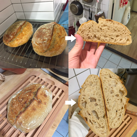 first loafs