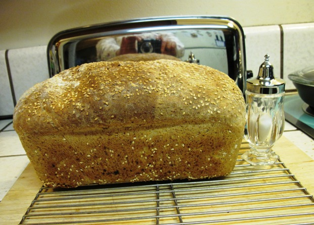 Sprouting For Ezekiel Bread The Fresh Loaf