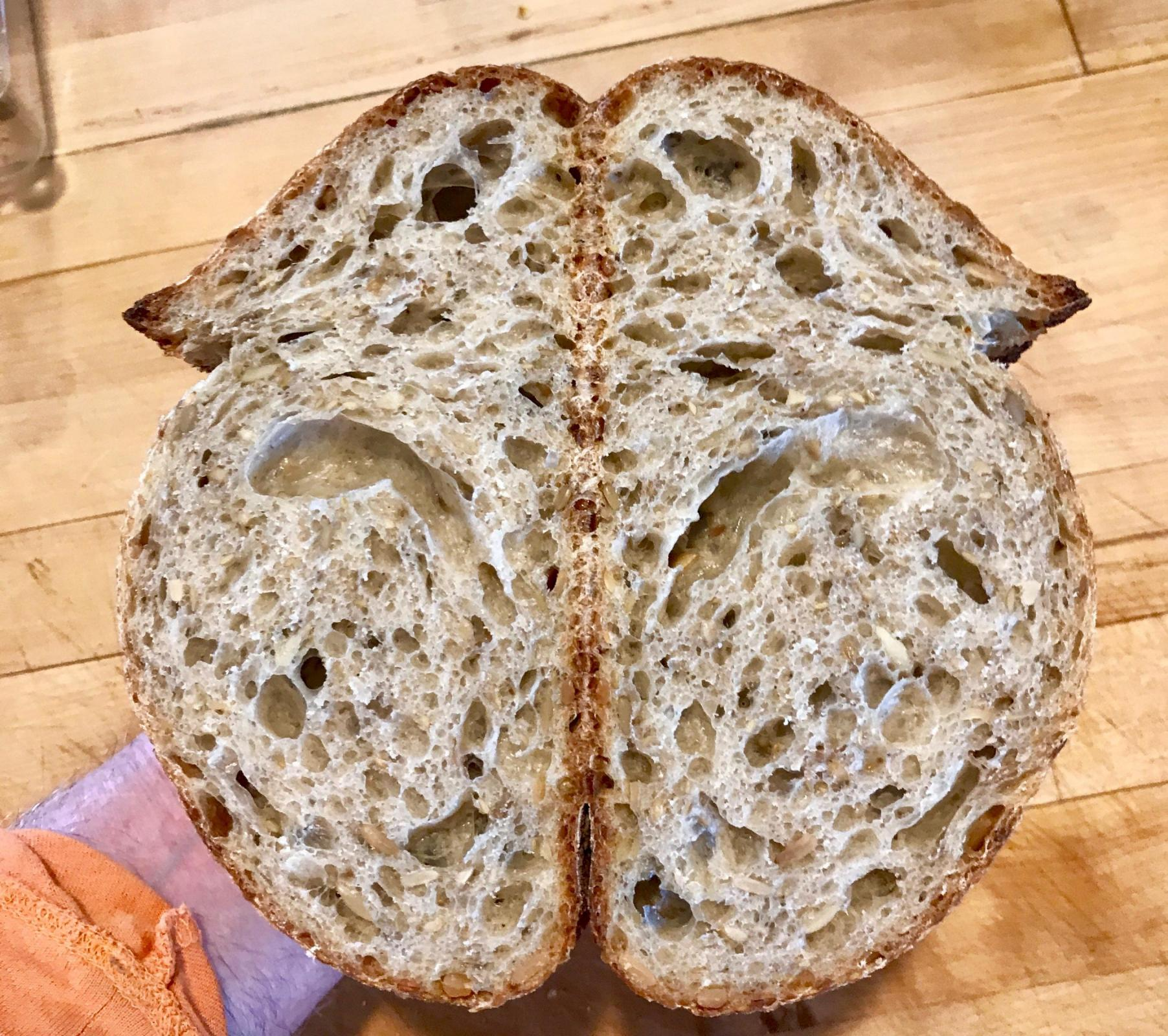 Sourdough Seed Bread crumb